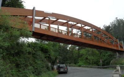 Puente de 50 m x 2,50 m sobre la carretera BI-2701 en Sopuerta-Galdames, Vizcaya (4178)