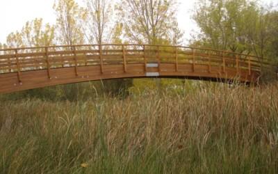 3716 – Puentes de 16,00 25,00 31,00 y 35,00 x 2,00 m en el Río Bullarque