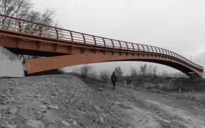 Puente de 61 m x 3 m Anillo Verde, en Vitoria-Gasteiz (4469)